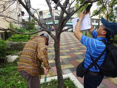植樹淨化空氣 中市府邀專家為樹木健檢